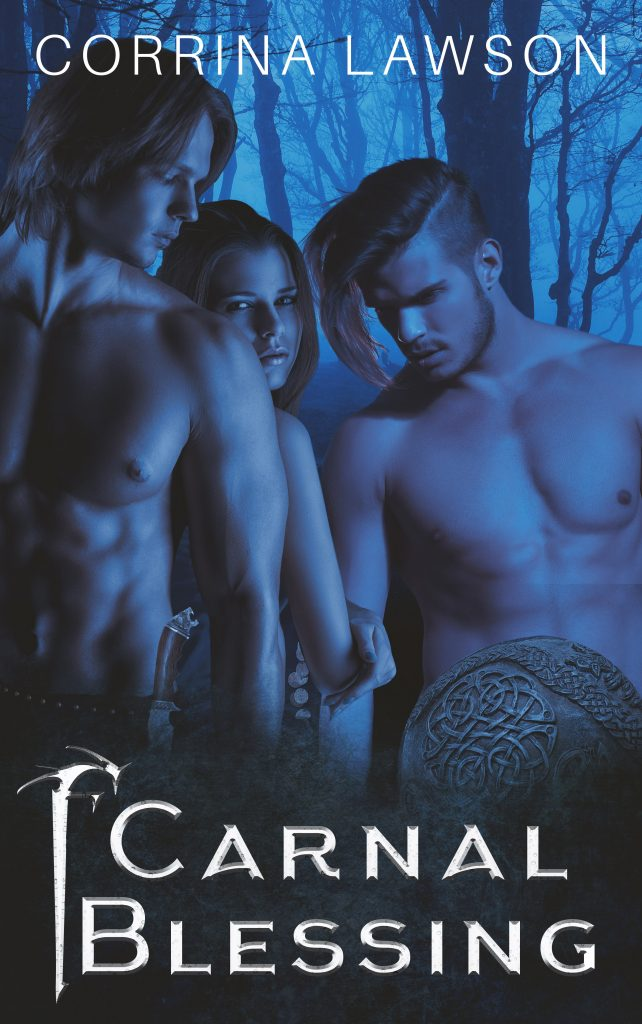 A Viking menage erotica